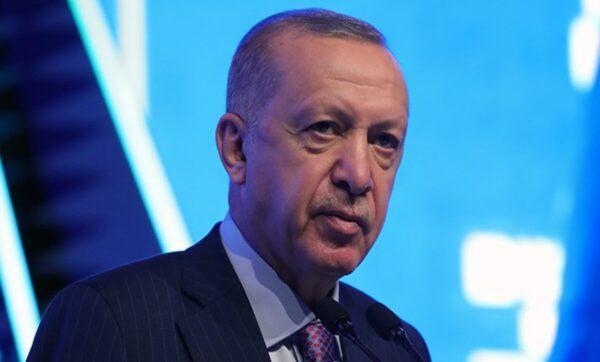 الرئيس التركي رجب طيب أردوغان - مواقع التواصل