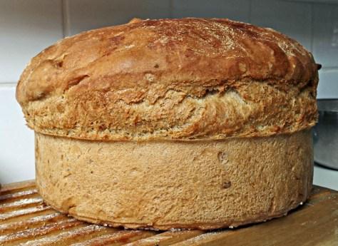 brood 1033
