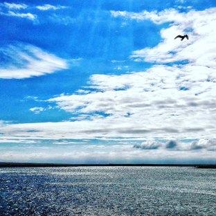 insta zeeland (6)