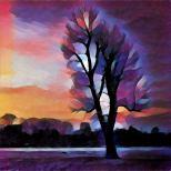 4 foto bewerkt met prisma (7)