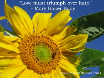 love must triumph over hate