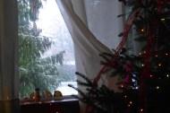 snow-and-christmas-lights