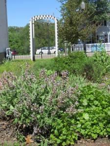 Garden near museum.