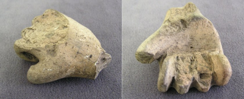 hand (fragment)