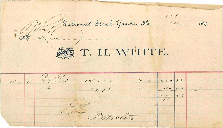 cattle purchase receipt, 1891
