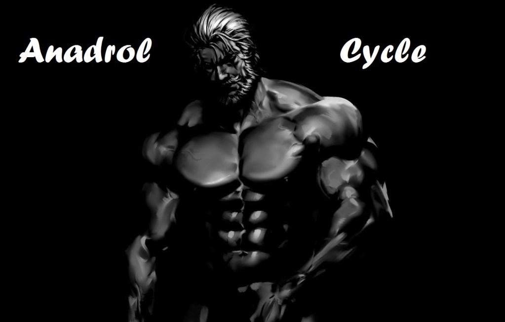 Anadrol-cycle