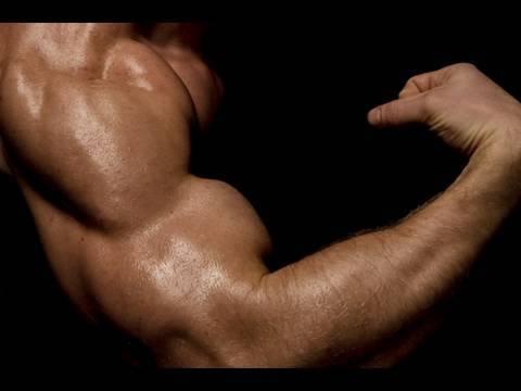 Anadrol-vs-Dianabol-biceps