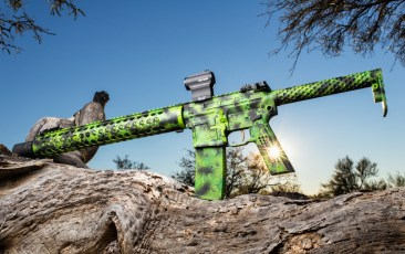 Toxic Theme on a SanTan Tactical AR by AZ Photos