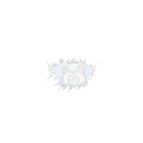 maddawgs watermark