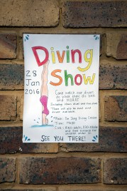Diving Show notice