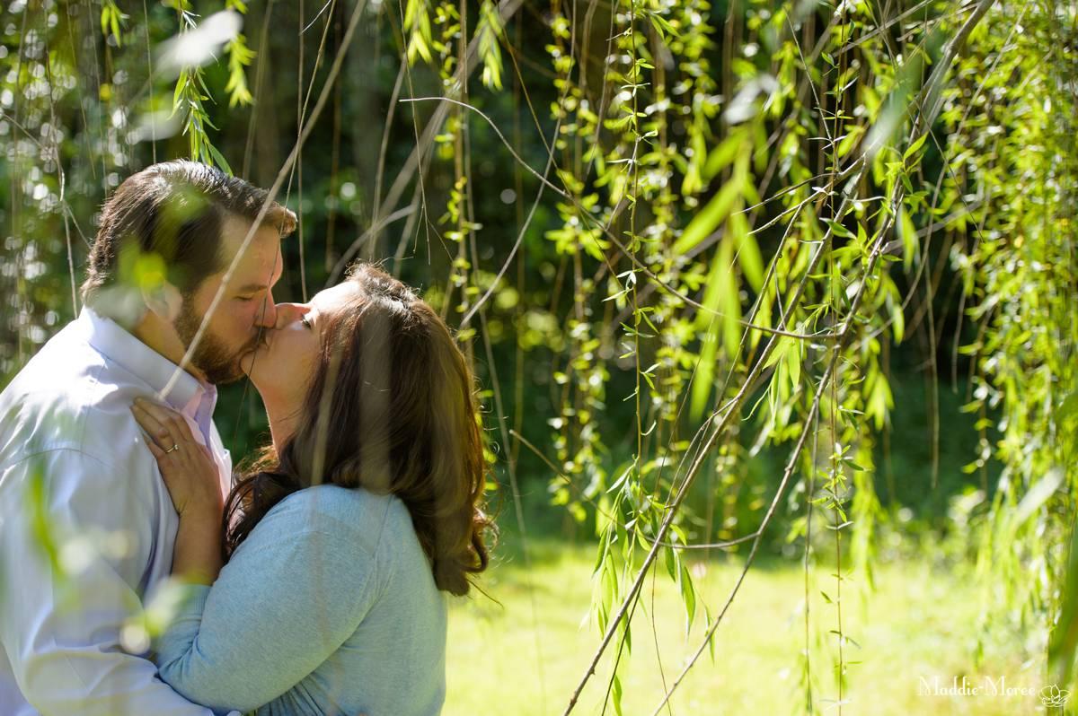 trees at engagement shoot