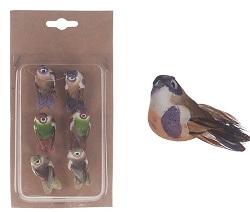 Birds/Birdhouses