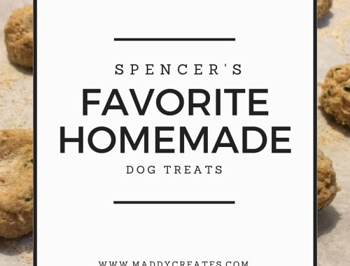 Spencer's Favorite Homemade Dog Treats // Maddy Creates