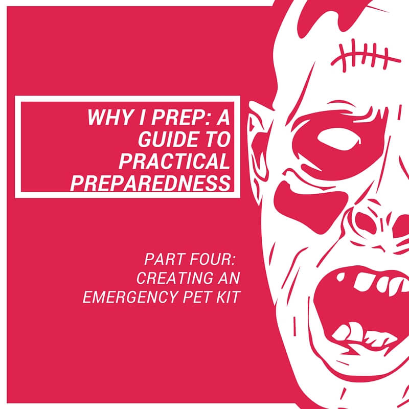Practical Preparedness: Creating an Emergency Pet Kit. Useful kit caring for an evacuating with your dog or cat in the event of an emergency.
