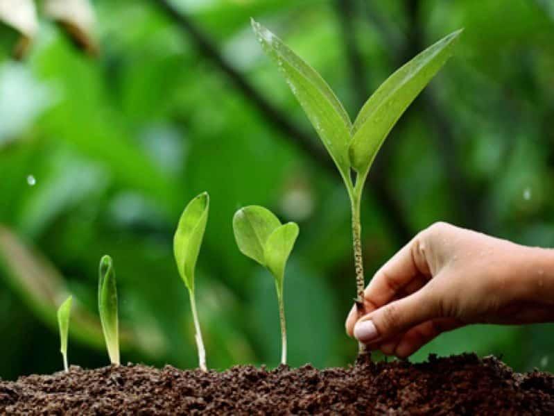 13 Contoh Teks Eksposisi Terbaru Tentang Lingkungan Kesehatan