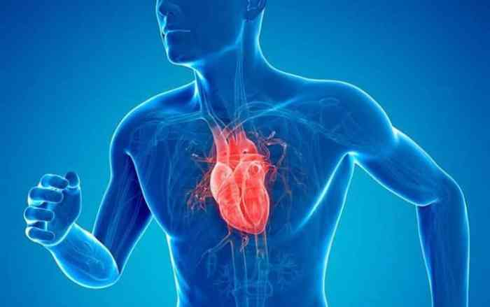 Menyehatkan Jantung