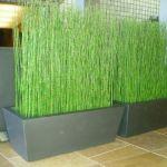 Bambu Air