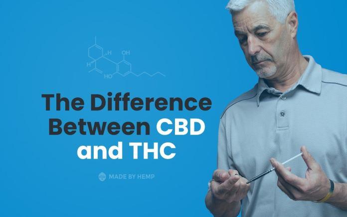 CBD vs THC Difference