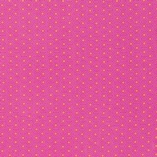 Tula Pink Slow & Steady 17