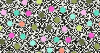 Tula Pink Slow & Steady 7