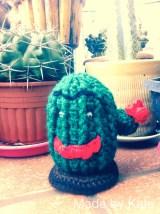 il Cactipo