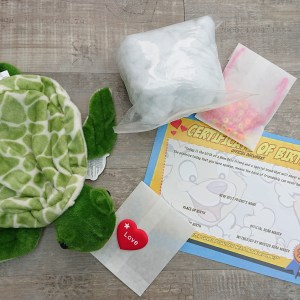 make your own turtle teddy bear kit