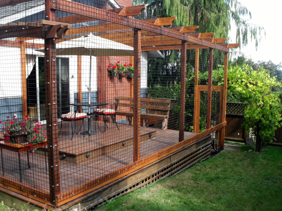 Pretty outdoor cat enclosures in Spaces Contemporary with  next to  alongside  and Catio