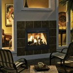 Splendid Outdoor Gas Fireplace Patio Traditional With Outdoor Fireplaces And Outdoor Gas Fireplace Indoor Outdoor Fireplace Indoor-outdoor Fireplaces Gas See Through See-through