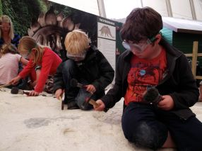 Being Paleontologists.