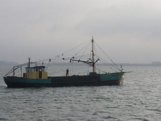 Ye 123, the oyster fishing vessel of our familie where I spent my summer holidays growing oysters.