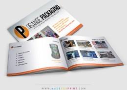 Orange-PKG-PitchDeck