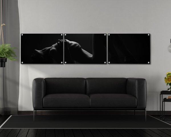 Modern Acrylic Contemporary Wall Display Split Portraiture