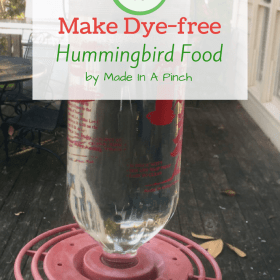Try making homemade hummingbird food!