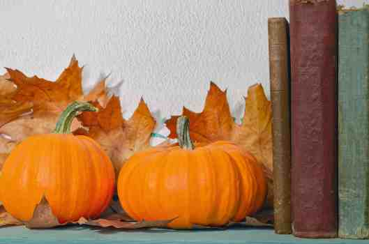 Reading is a great way to learn more about Thanksgiving and learn how to appreciate what we have. For our list of 21 of the best Thanksgiving books for kids visit Made in a Pinch. For more helpful tips and awesome family recipes, follow us on Pinterest!