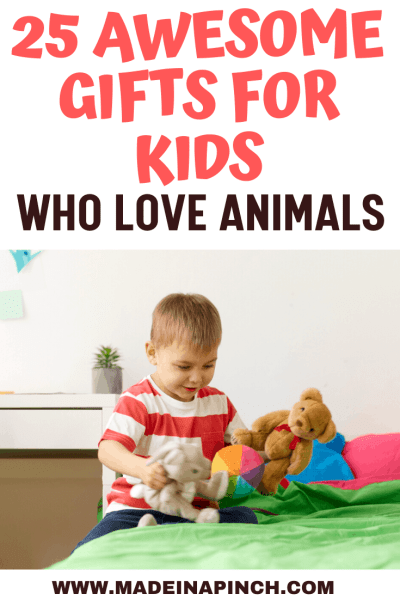 25 Awesome Any-Occasion Gifts for Kids Who Love Animals