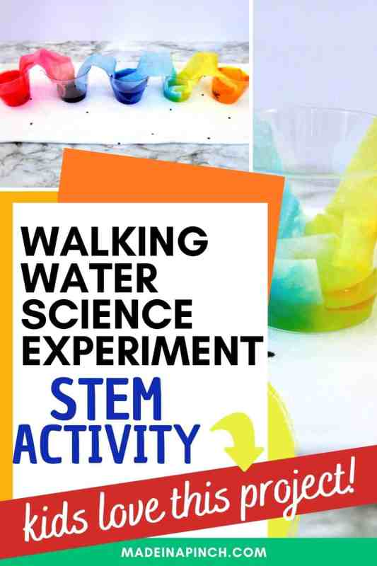 Walking water science experiment for kids pin image B