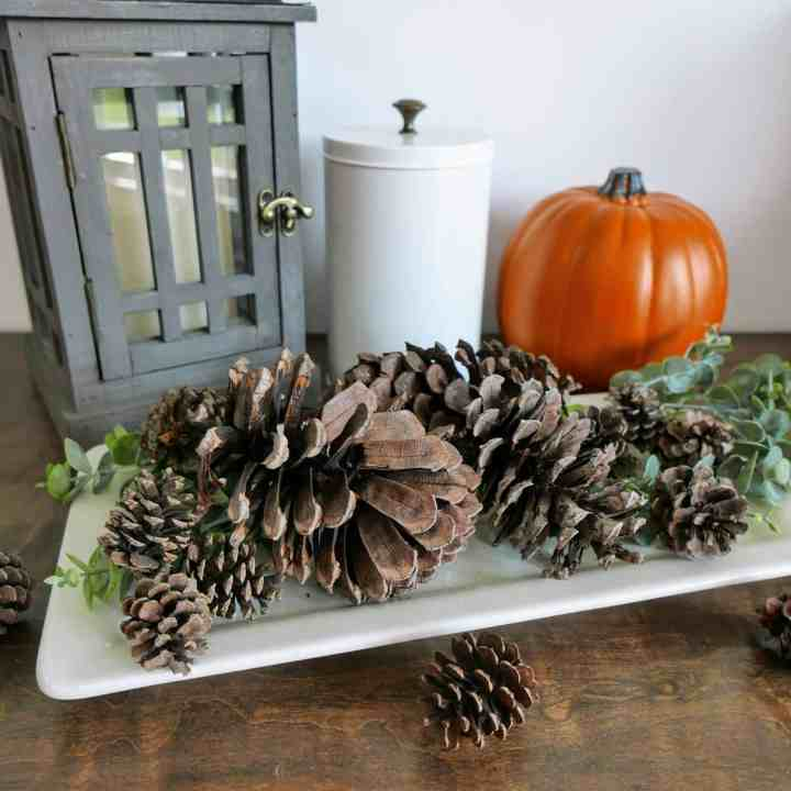 DIY Cinnamon Scented Pinecones