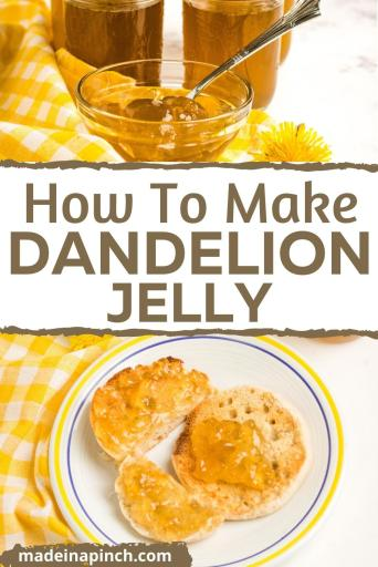 how to make dandelion jelly pin image