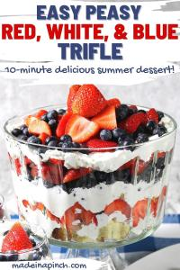 red white and blue trifle pin image