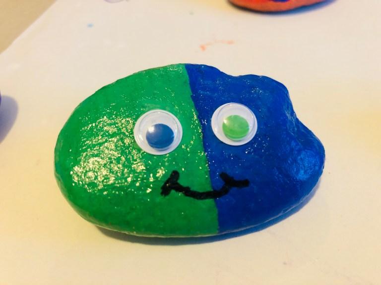 painted pet rock