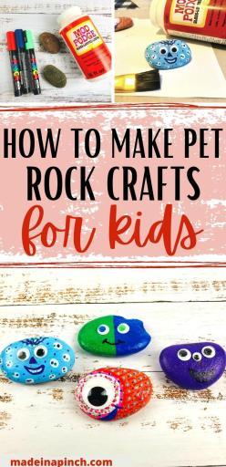 painted pet rocks craft long pin image
