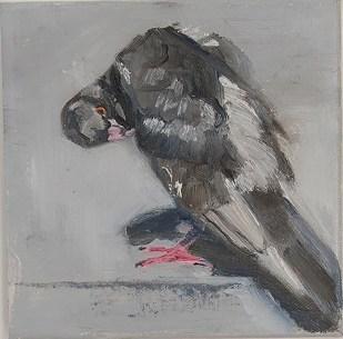 Joan Uloth - Little Pigeon