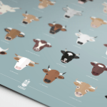Affiche Vaches 2