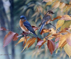 Blue Birds and Beech Leaves Giclee Print