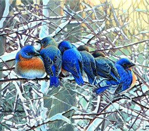 Winter Bluebirds Giclee Print on Wrapped Canvas by Artist Russell Cobane