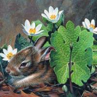 Spring Baby Giclee Print on Wrapped Canvas by Artist Russell Cobane