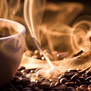 100% Arabica Coffee by Owl Coffee Roasters
