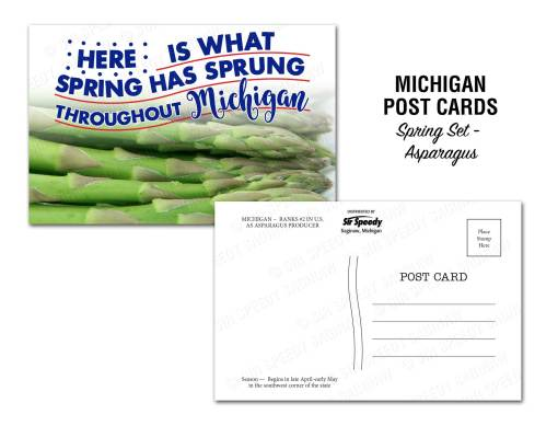 Michigan Asparagus Postcard