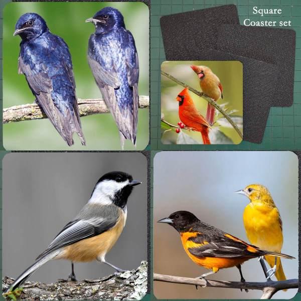 Neoprene Michigan Bird Coaster Set