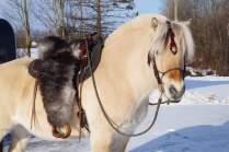 Sheepskin saddle, custom made by hand